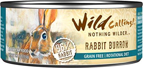 Wild Calling Rabbit Burrow
