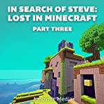 In Search of Steve: Lost in Minecraft, Part Three |  Innovme Media