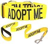 """«Adopter ME"""" Couleur Jaune Coded Nylon Grand L-XL Semi-Choke collier de chien et de luxe rembourré Poignée 1,2 Laisse SET (New domicile nécessaires) Faire un don à votre organisme local!..."""