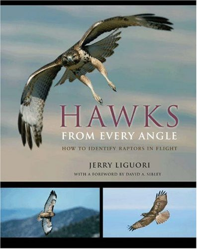 Hawks from Every Angle: How to Identify Raptors In Flight, Jerry Liguori