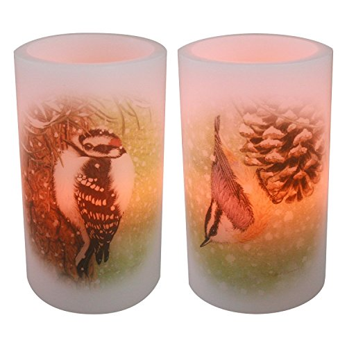 "Candle Impressions Set Of 2 Double Sided 6"" Birdwatcher Series Flameless Wax Battery Operated Led Candles With Timer"