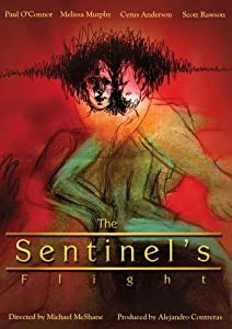 The Sentinel's Flight