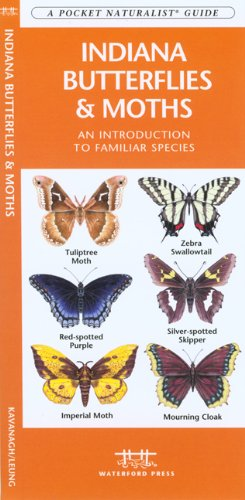 Indiana Butterflies & Moths: An Introduction to Familiar Species (State Nature Guides)