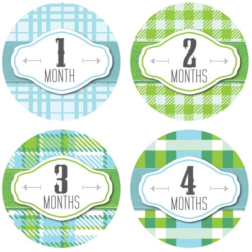 Monthly Onesie Stickers - Hipster Plaid Western Theme - Baby Boy Bodysuit Stickers - 1