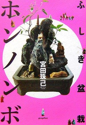 ふしぎ盆栽ホンノンボ