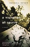 img - for A Visitation of Spirits: A Novel book / textbook / text book
