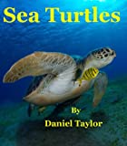 Sea Turtles: A Fun Fact Picture Book for Young Readers Aged 9 and Up