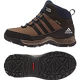 adidas Outdoor CW Winter Hiker Mid Gtx Snow Boot Grey Blend/Black/Night Brown 6.5 Big Kid M