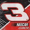NASCAR 'Dale Earnhardt' Lunch Napkins (16ct)