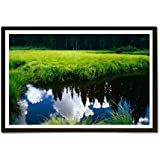 EzyPRNT Nature Colorful Scene Nature Framed Poster (Size: 19x13 Inch)