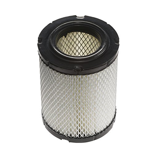 Champion CAC9345 Conical/Radial Air Filter