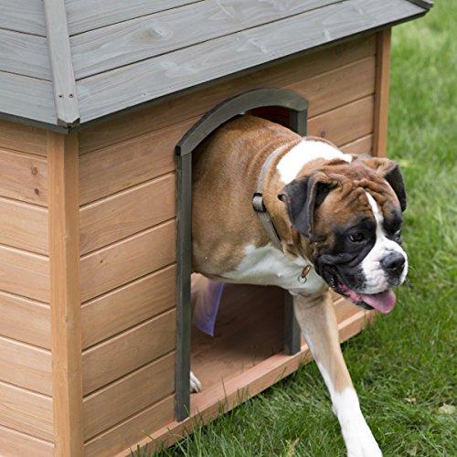 Sturdy Quality Boomer Amp George Large Gazebo Dog House
