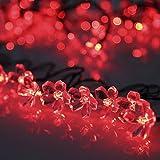ProGreen イルミネーションライト ガーデンライト 50LED led ソーラー充電式 結婚式 クリスマス  屋外 防水 全長7m 光センサー内蔵  DIY (赤)
