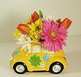 Napco Love Bug Car Planter, 2 Assorted, 8