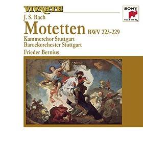 Jesu, meine Freude, BWV 227: IX. Gute Nacht, o Wessen (Voice)