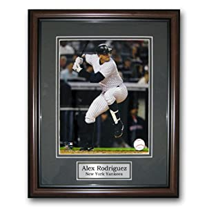 MLB New York Yankees Treehugger 11x14 Unsigned Framed Photo-Alex Rodriguez