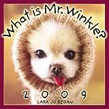 What is Mr. Winkle 2009