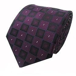 Rossini Men's Tie (UFAM06_Purple_Free Size)