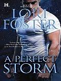 A Perfect Storm (Hqn)