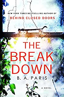 Book Cover: The Breakdown: A Novel