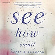 See How Small: A Novel (       UNABRIDGED) by Scott Blackwood Narrated by Rengin Altay