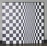 img - for Bridget Riley: Paintings From the 1960s and 70s book / textbook / text book