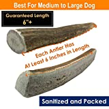 Deluxe Naturals Elk Antler Dog Chews for Medium to Large Dogs, Large, 1 lb
