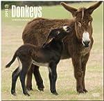 Donkeys 2015 Square 12x12
