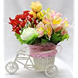 Creativegifts Vase Cycle Shape Flower Pot With Flowers Flower Bucket Vases Flower Pots For Home Decor - B01HF22SM8