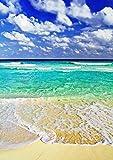 【A3サイズミニポスター】 蒼海と砂浜(B) POSA3-025 (42.0×29.7cm)