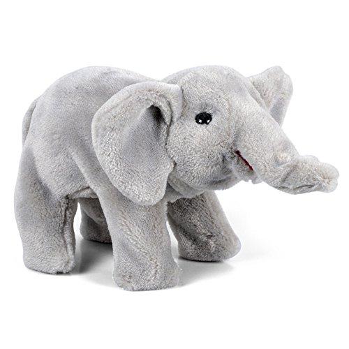 walk-in-the-wild-baby-elephant