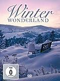 echange, troc Winter Wonderland