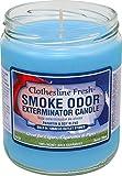 Smoke Odor Exterminator 13oz Jar Candle, Clothesline Fresh