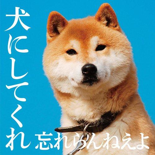 犬にしてくれ 初回盤(CD+DVD)