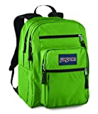JanSport Big Student Backpack (Hedge Green)