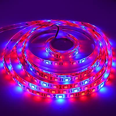NEWSTYLELIGHTING 5050 Super Bright Aquarium Coral LED Strip Light 5M 300LEDs/spool Waterproof LED Plant Grow String Lights DC 12V Blue + Red Color String lamp