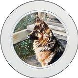 Tax Disc Holder ft The German Shepherd Dog design No. 4