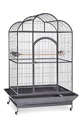 Prevue Pet Products Silverado Macaw Dometop Cage 3155S Silverado 46-Inch by 36-Inch by 78-1/4-Inch