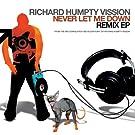 Never Let Me Down (Remixes)