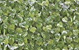 Artificial Screening/Hedging or Wall Covering (Virginia Creeper) 1mx1m