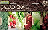 880 Vegetable Seeds 6 in 1: Cress Curled/Spring Onion/Radish/Tomato Plum Roma/Beetroot/Iceberg Lettuce/MULTI-BUY DISCOUNT/Salad Bowl