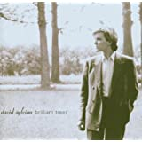 Brilliant Trees ~ David Sylvian