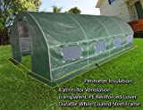 20x10x6 Portable Greenhouse Large Walk-in Green Garden Hot House
