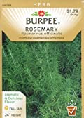 Burpee 61383 Herb Rosemary Seed Packet