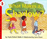 What Makes a Shadow? (Let