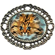 Fat Cat Large Antiqued Brass Filigree Brooch