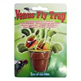 Tobar 8922 / Grow Your Own Venus Fly Trap