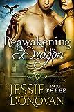 Reawakening the Dragon: Part Three (Stonefire Dragons Book 16)