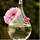 Clear Glass Hanging Vase Bottle Hydroponic Pot Flower Home Garden Decor