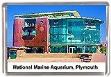 National marine aquarium plymouth Gift Souvenir Fridge Magnet